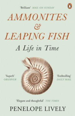 Ammonites & Leaping Fish