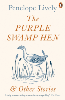 The Purple Swamp Hen